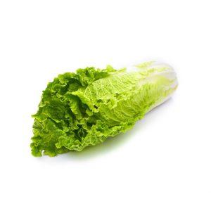 vegetable-15