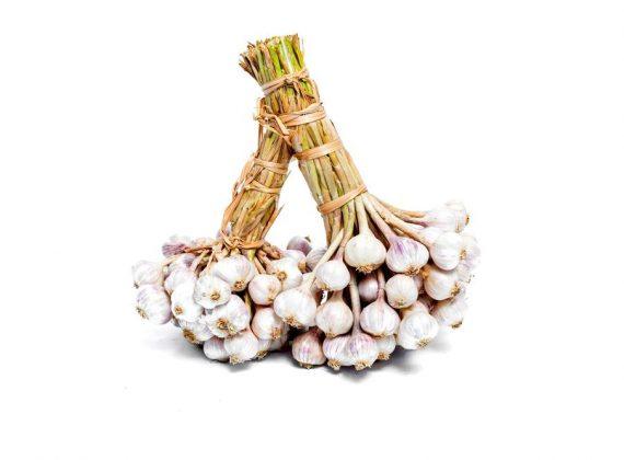 Fresh Ly Son Garlic