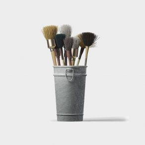 The Brushes
